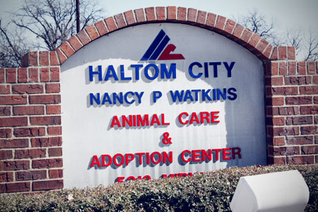 haltom city animal services