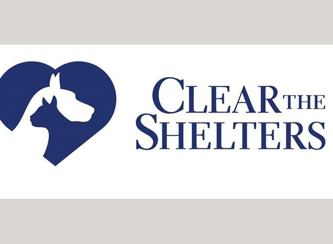 haltom city animal services clear shelters